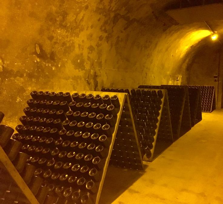 Champagne cave Reims (Kate Jones, Shutterstock)
